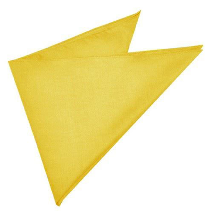 Picture of Bandanna