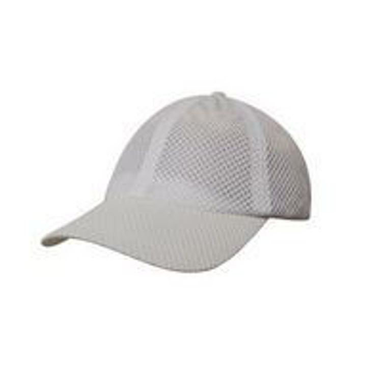 Picture of Sports Mesh